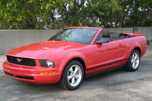 Car Rentals in Florida